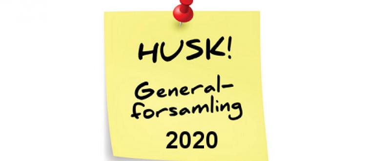 Ordinær generalforsamling for 2020